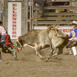 Keeping the Bull Away - Ellensburg Rodeo; featured on Shutterbug Magazine's Facebook page