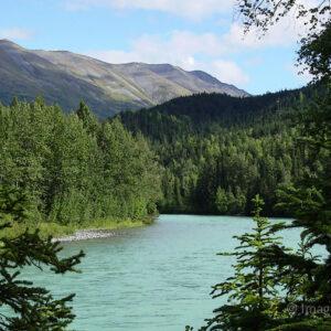 Kenai River - Alaska