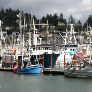 Newport Fishing Boats - Oregon